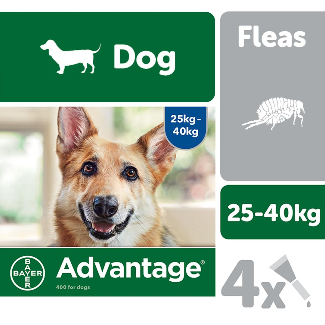 advantage large dogs flea drops
