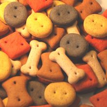 Pointer Mixed Biscuit Treats Dog