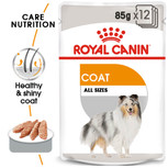 royal canin coat care wet pouch