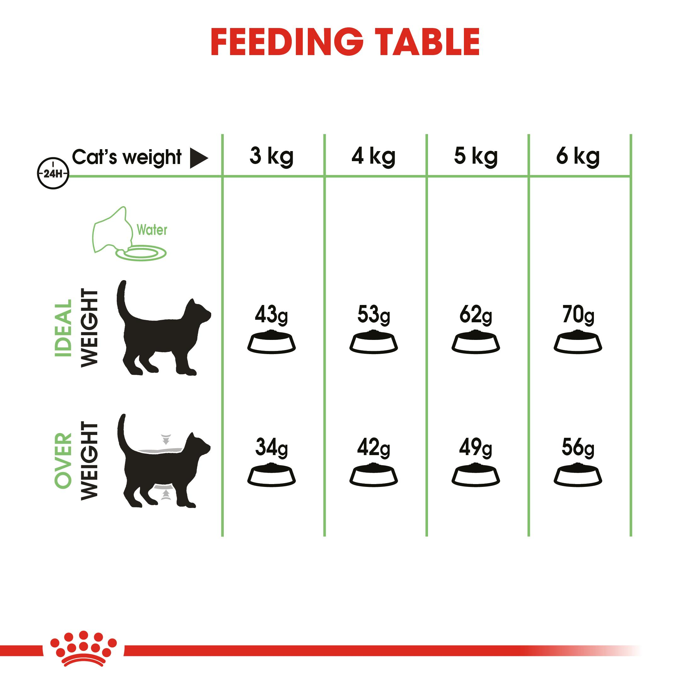 ROYAL CANIN® Digestive Care 10kg
