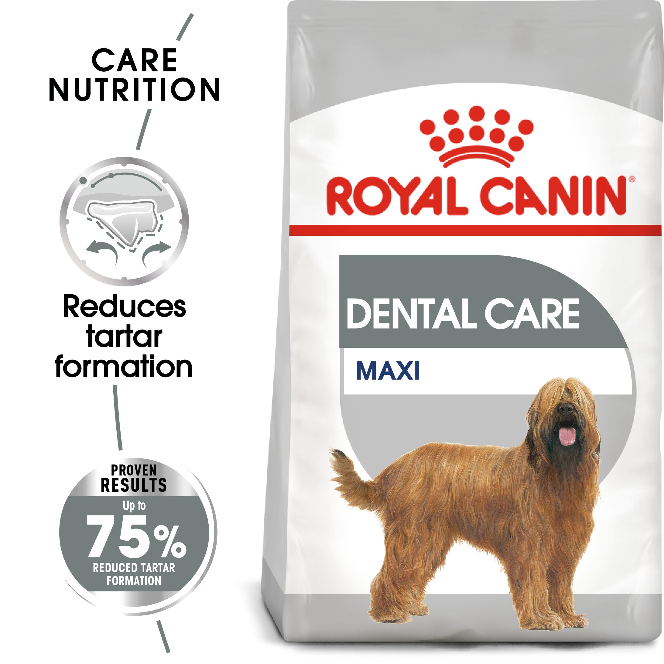 royal canin maxi dental care adult
