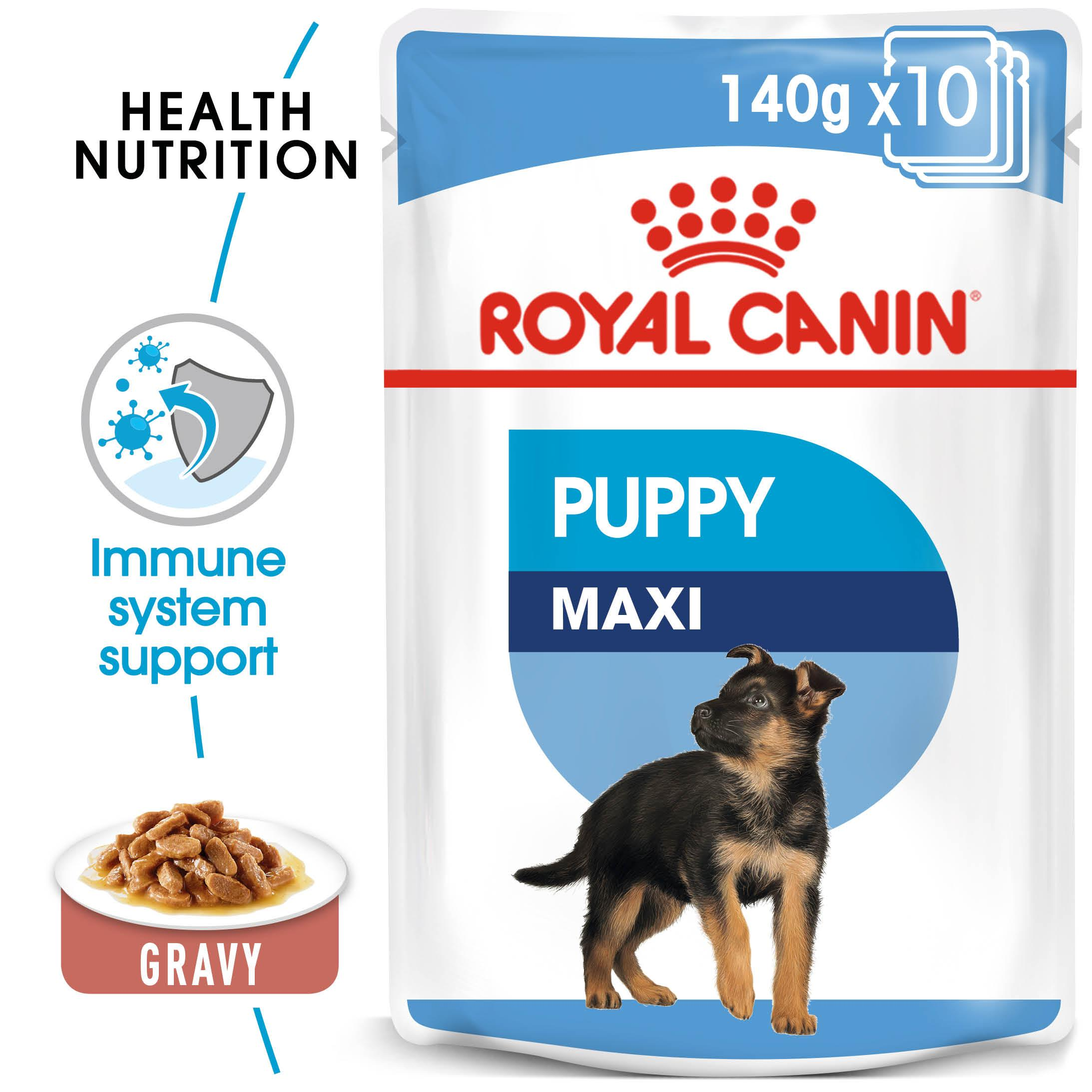 ROYAL CANIN® Maxi Puppy (in gravy)