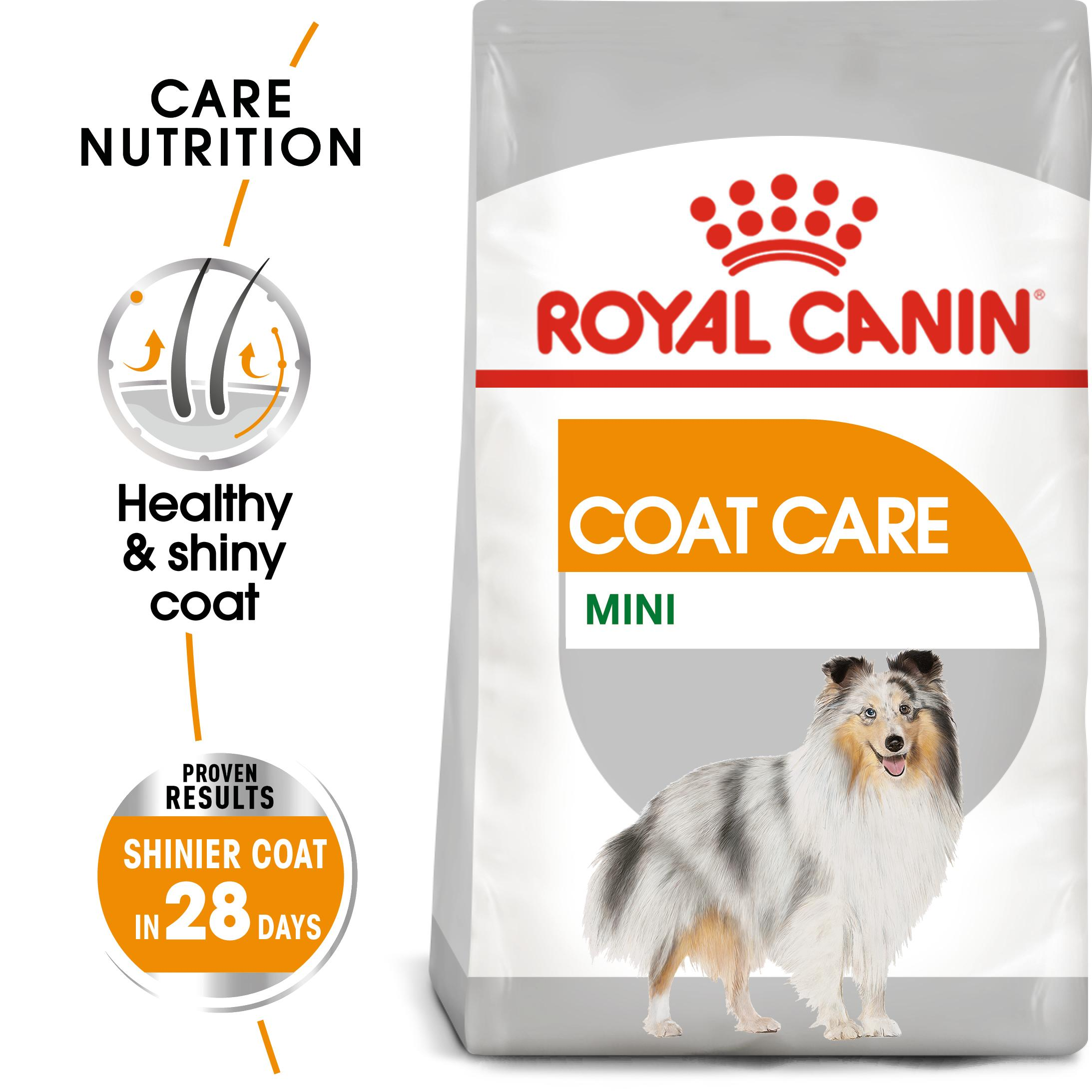 royal canin mini coat care dry food